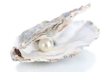 pearl shell: Open oyster with pearl isolated on white