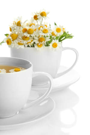 Cups of herbal tea and wild camomiles, isolated on white photo