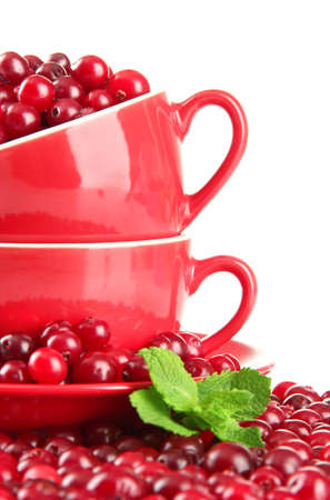 Ripe red cranberries in cups, isolated on white  photo