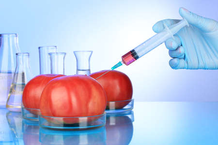 Injection into fresh red tomato on blue background photo