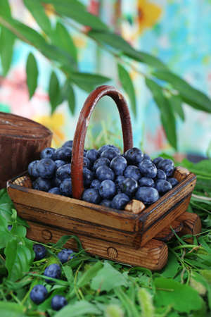 Blueberries in wooden basket on grass on nature background photo