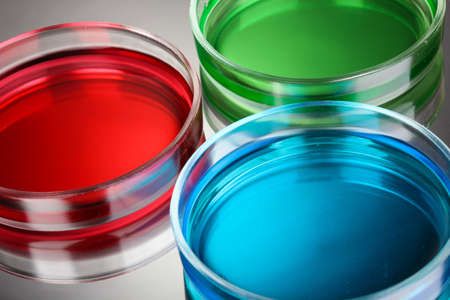 reagent: color liquid in petri dishes on grey background Stock Photo