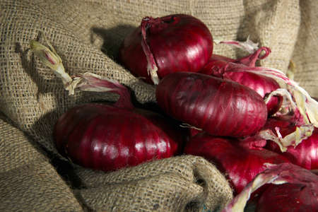 aftertaste: Fresh red onions in cellar