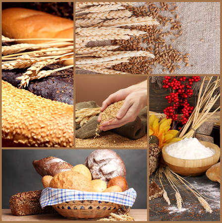 Bread and harvesting wheat collage photo