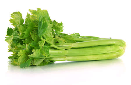 Verse groene selder geïsoleerd op wit Stockfoto
