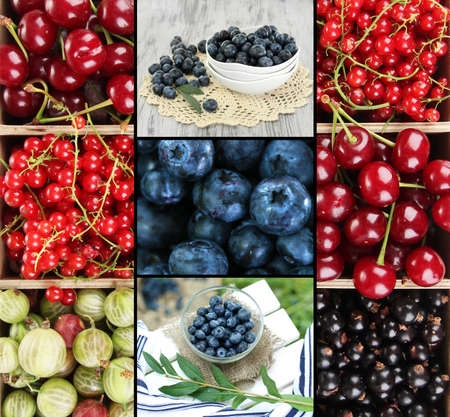 Fresh berries collage photo