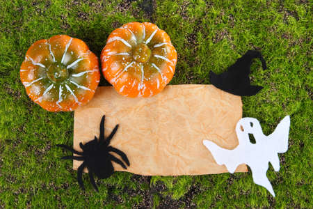 Old paper with Halloween decorations on green moss background photo