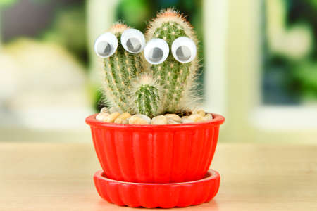 Cactus in flowerpot with funny eyes, on wooden windowsill photo