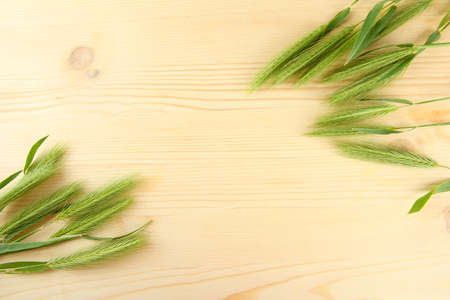 spikelets: Green spikelets, on wooden background Stock Photo
