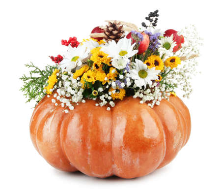Beautiful autumn composition in pumpkin isolated on white Stock Photo