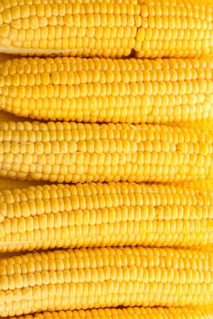 fresh pop corn: fresh corn, close up