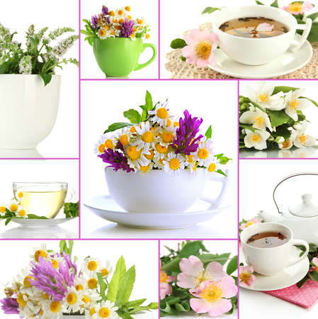 Collage of healthy green tea Stock Photo - 23893282