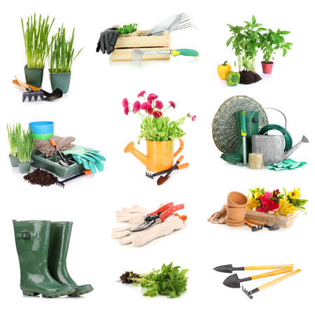 Collage of gardening equipment isolated on white photo