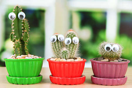 Cactuses in flowerpots with funny eyes, on wooden windowsill photo