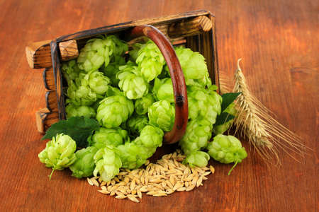 Fresh green hops in basket and barley, on wooden background photo