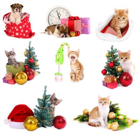 Christmas animals isolated on white Stock Photo