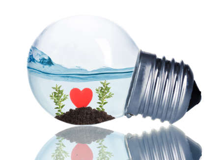 Red heart with plants under water inside light bulb isolated on white photo