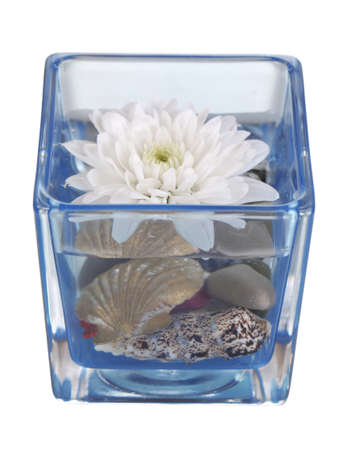 Decorative vase with flower, water and stones isolated on white photo