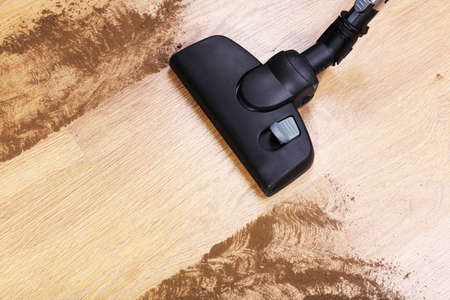 saprophyte: Vacuuming floor in house