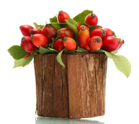Rose hip maturi con foglie in vaso di legno, isolato su bianco