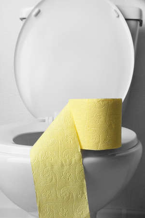Toilet paper on a toilet, close-up Stock Photo - 25389655