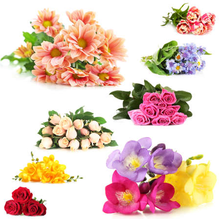 garden cornflowers: Flower bouquets isolated on white