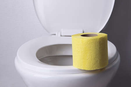 Toilet paper on a toilet, close-up Stock Photo - 25622253