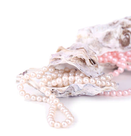 perl: Shells with pearls, isolated on white