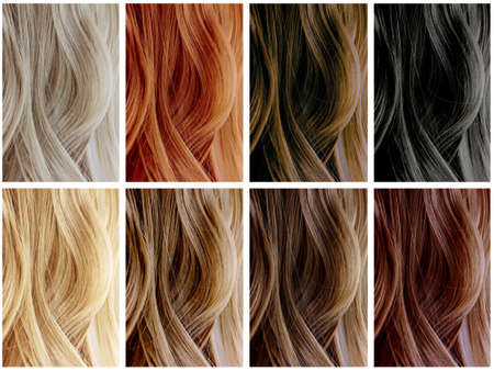 Hair Color Samples Banco de Imagens - 25752396