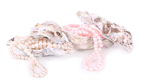 Shells with pearls, isolated on white photo