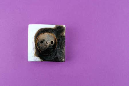 mains: Burned plug socket close up