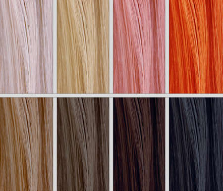 Hair Color Samples photo