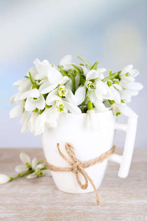 Beautiful snowdrops in cup on blue background photo