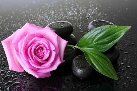 Spa stones with drops, pink rose and green leaves on grey background photo