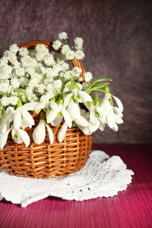 Beautiful snowdrops in basket on  purple table photo
