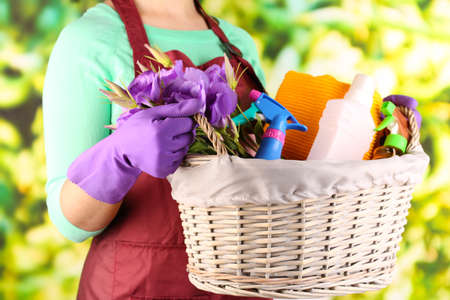 Housewife holding basket with cleaning equipment on bright background. Conceptual photo of spring cleaning.  photo