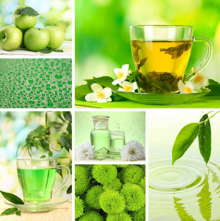Collage of photos in green colors photo