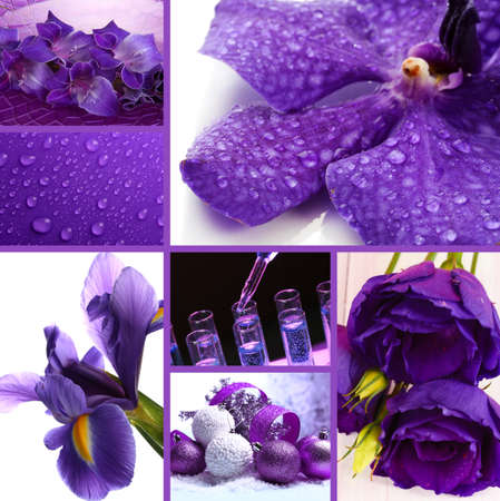 Collage of photos in purple colors photo