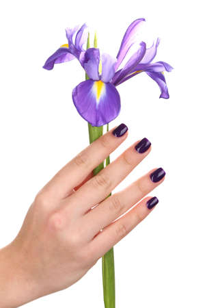Beautiful woman hand with flower isolated on white photo