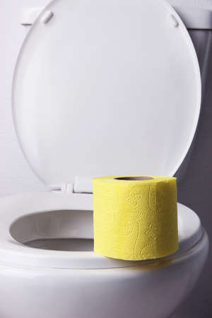Toilet paper on a toilet, close-up Stock Photo
