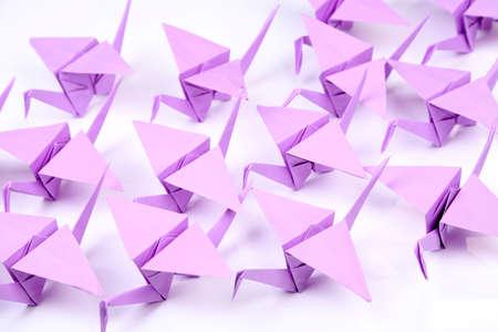 Origami cranes on white background photo