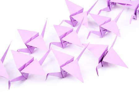 Origami cranes isolated on white photo