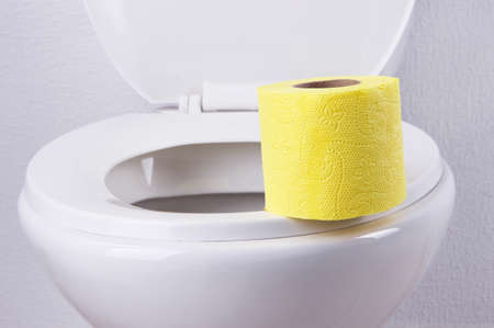 Toilet paper on a toilet, close-up Stock Photo - 27035286
