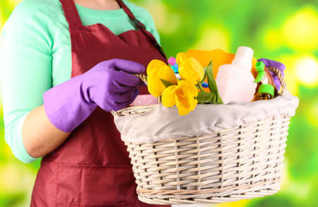 Housewife holding basket with cleaning equipment on bright . Conceptual photo of spring cleaning. Stock Photo - 27035225