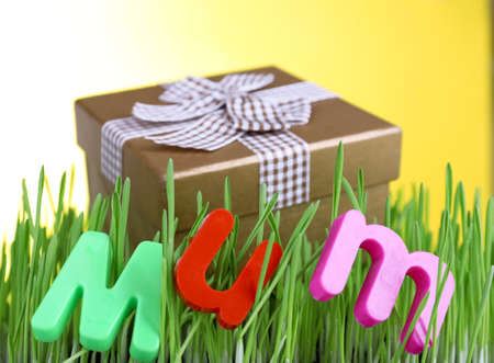Gift box for mum on grass on color background photo