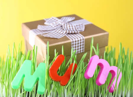 Gift box for mum on grass on color  photo