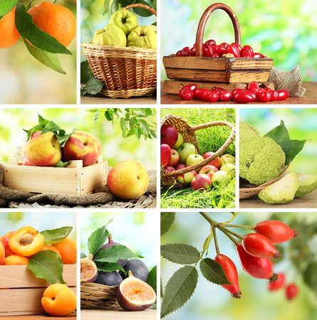 canasta de frutas: Collage de frutas del jard�n y las bayas