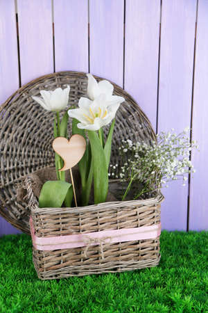 Beautiful hyacinth flower in wicker basket, on green grass on color wooden background photo