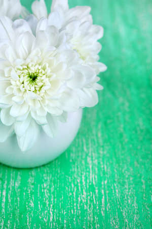 Beautiful chrysanthemum flowers in vase on wooden table close-up photo