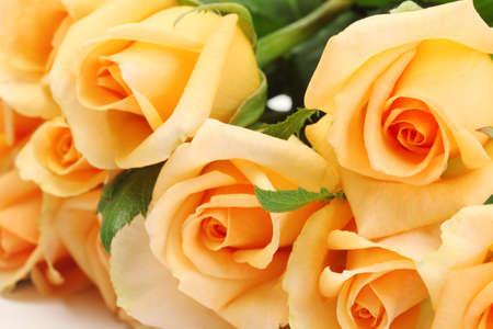 valentinas: beautiful bouquet of roses close up